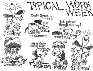 Does your week look like this?!
