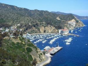 Beautiful Catalina